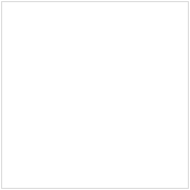 Oily skin solution